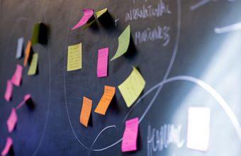 Stakeholder workshop insights